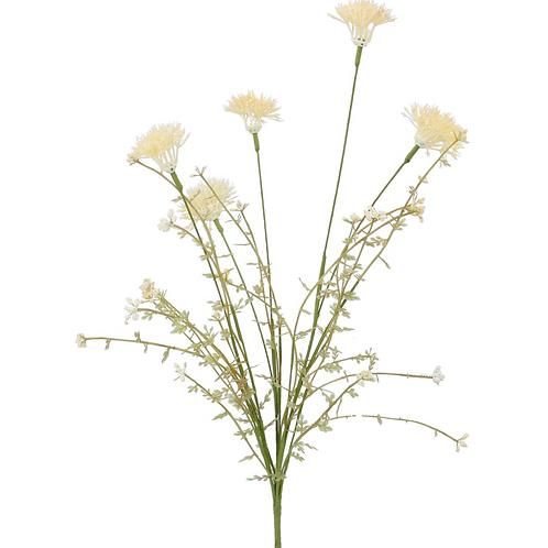 Cream Wild Thistle - Spray 50cm