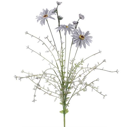 Blue Wild Daisy - Spray 50cm