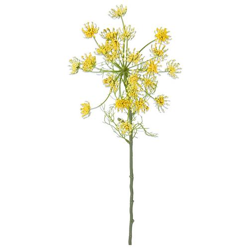 Yellow Queen Annes Lace - Stem 63cm