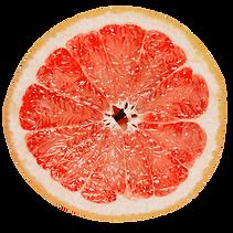 comofunciona-toronja.png