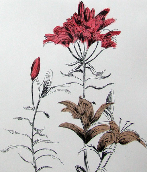 detail-of-This-Way-drypoint-with-carborundum-and-chine-collé.jpg