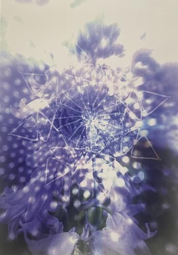 [S0ULTRADER] - Flower of Life