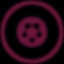 iconos sitio_Mesa de trabajo 1 copia.png