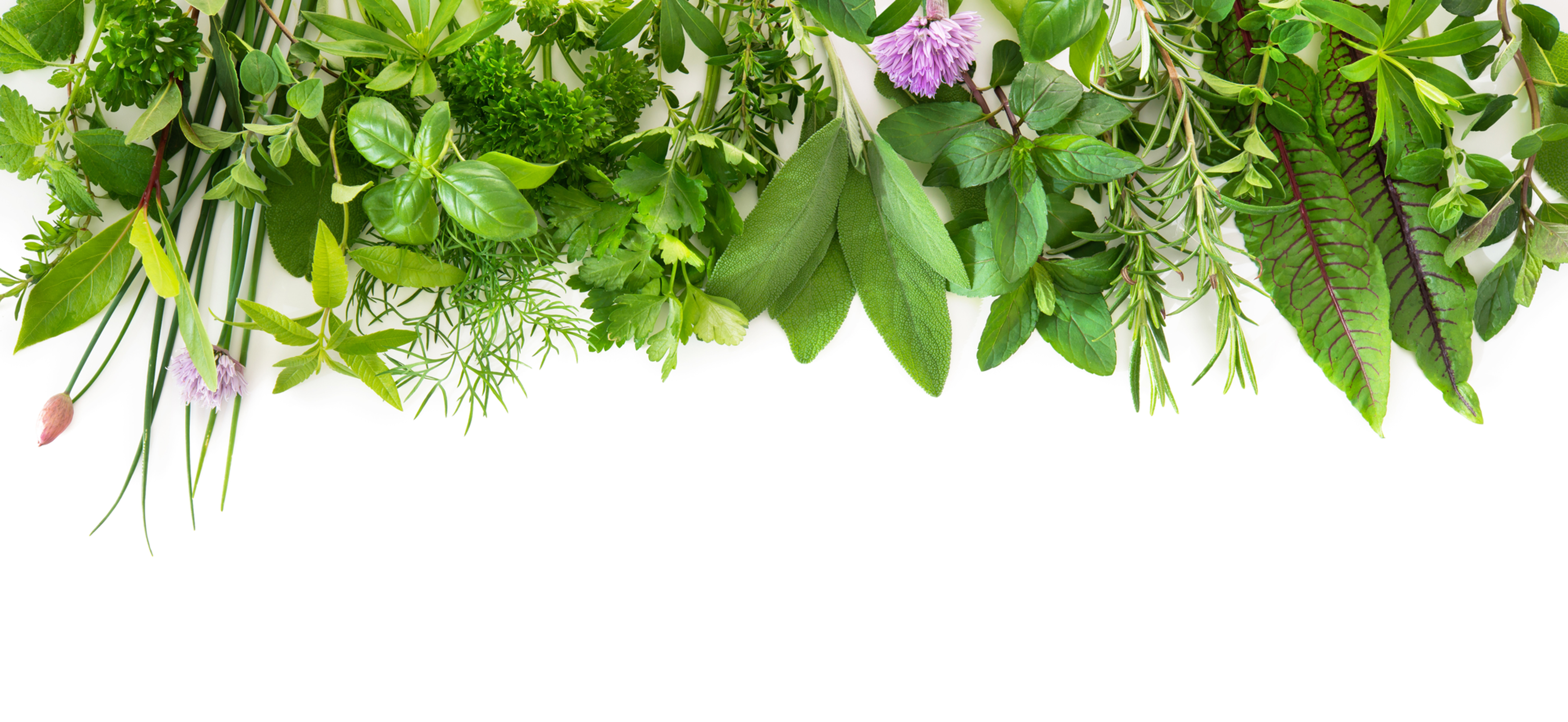 Freeman Herbs Market Pick Up