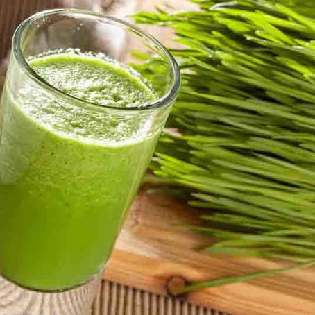 Celery-Wheatgrass Juice