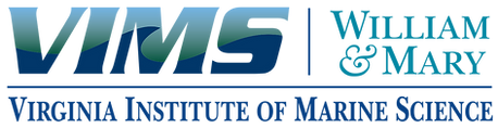 vims_png_logo_0418.png