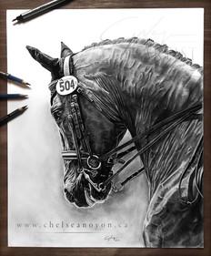 """Dressage Horse"" 2021"