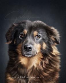 Custom Portrait 2021