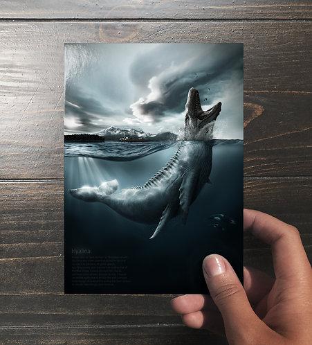 """""""Hyalina"""" Art Card"""