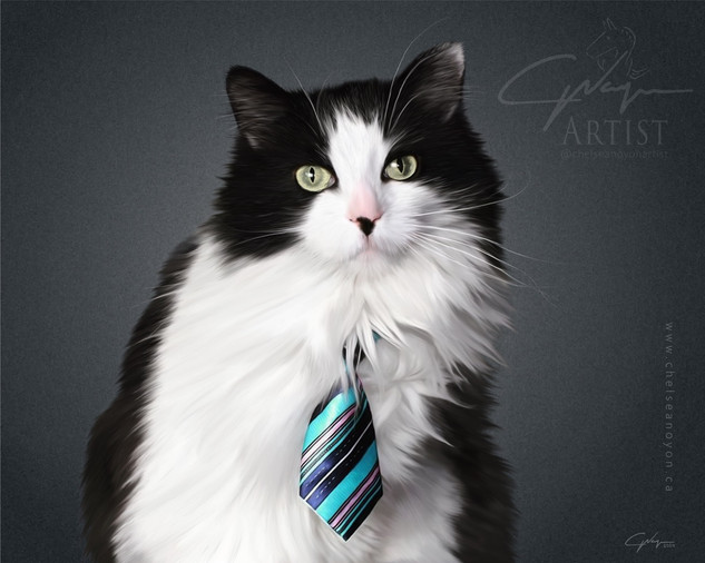"""""""Cat Portrait"""" 2020"""