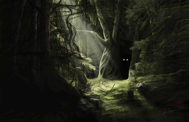 """""""Wary Eyes of the Undisturbed Forest"""" 2020"""