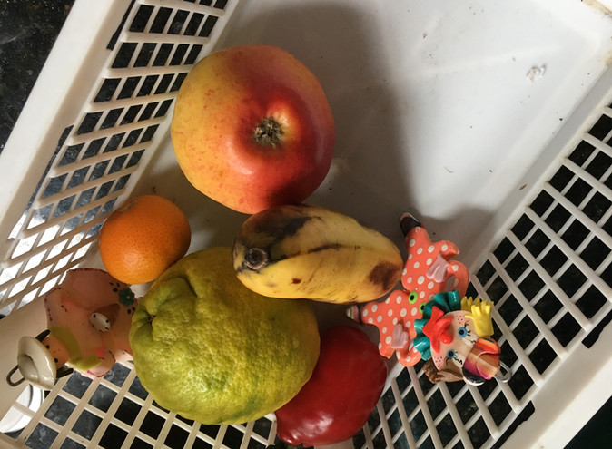Volunteer's Fruit Basket