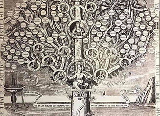virtue tree.jpg