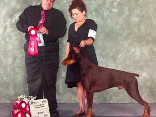 Rudy Finishes his UKC Championship in One Weekend.  Back to Back Shows!