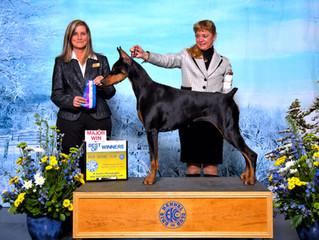 Vega wins her 3rd 4 point Major with Karin Fox!