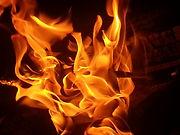 campfire_fire_burning.jpg
