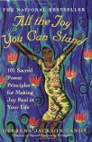 All-the-Joy-You-Can-Stand-Iyanla-Vanzant