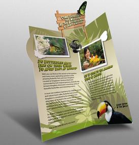 DL-pamplet2.jpg