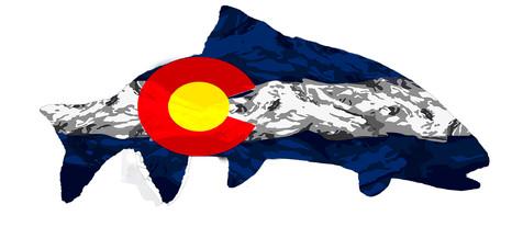 Snow Camo Colorado Trout