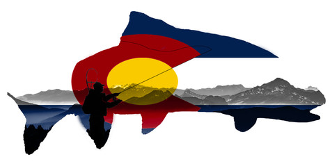 Colorado Flag Trout With Fly Fisherman