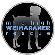 Mile High Weimaraner Rescue SM Logo.png