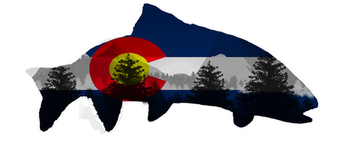 Colorado Flag Trout With Trees and Mountains