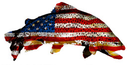 American Trout Flag with fish color site