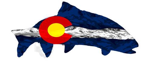 Snow Camo Colorado Trout Logo