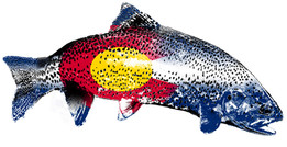 Colorado Flag Trout