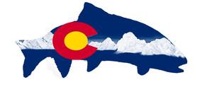 Colorado Flag Trout with White Mountains