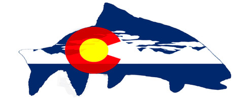 Colorado Flag Trout with Clouds