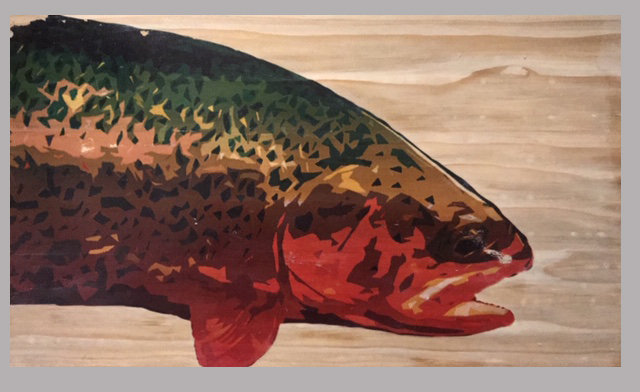 Wild Colors Rainbow Trout