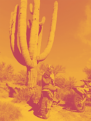 rtrvacation_phoenix-1.png