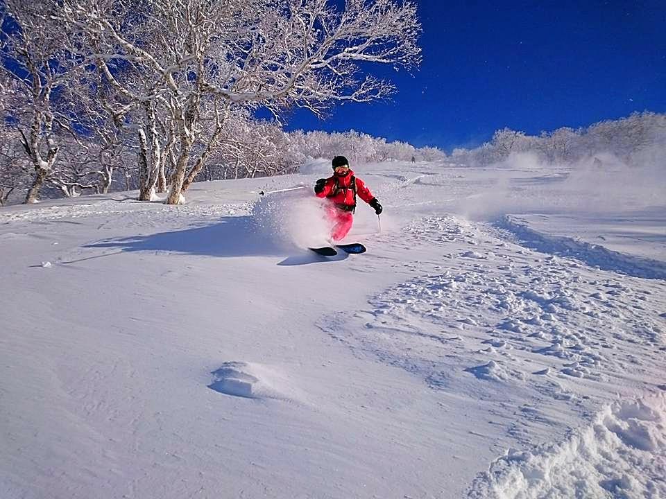 Powder ski in niseko