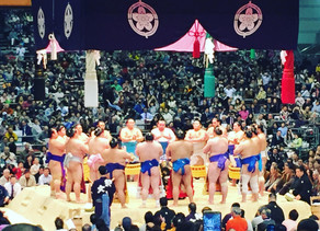 The When, How, Where of SUMO!
