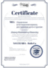 Сертификат MBA Finance (17).jpg