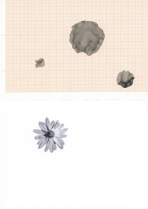 Scan_Zeichnung_2013_365.jpg