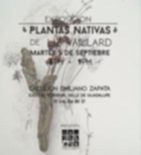 1.Invitacion plantas nativas.jpg