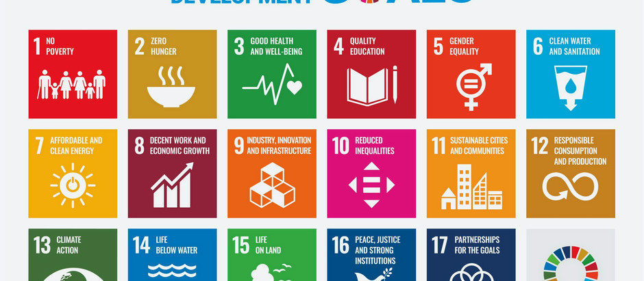 The framework of the SDGs for the Common Good and smart partnerships.