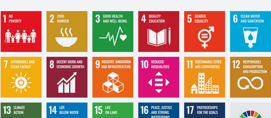 A UNDP REMINDER - The Sustainable Development Goals are not buzzwords. They serve as blueprints.