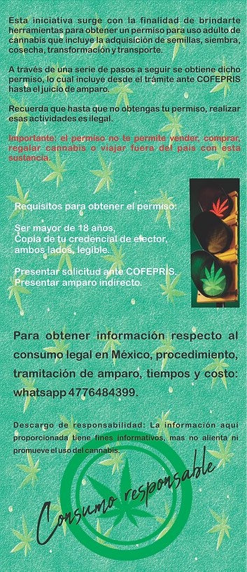 Flyer cannabis 4.png
