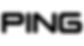 ping-logo-vector.png