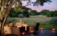 Phinda Private game reserve view