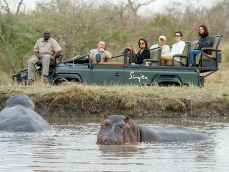 Your African Safari Lodge Experience