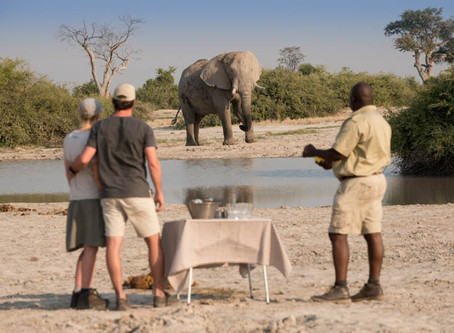 What should you pack for your Southern African Lodge Safari