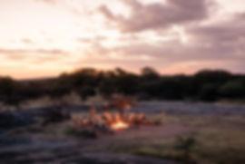 Tengile_River_lodge_game_drive_leopard_o