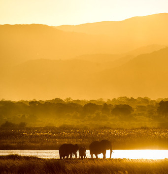 Boating & Water Safaris
