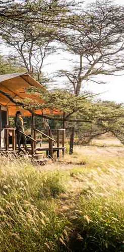 Kusini Safari Camp