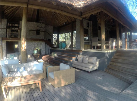 4 Nights at Leadwood, in the Sabi Sand