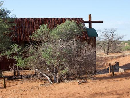 Kgalagadi Desert Wander (part 2)